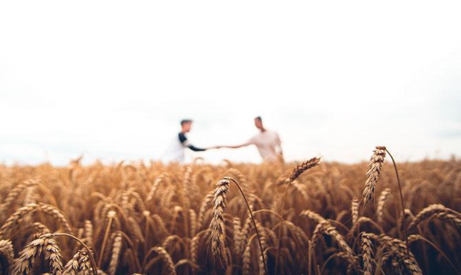 Two farmers shaking hands in Barley field